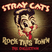 Stray Cats Won't Stand in your way