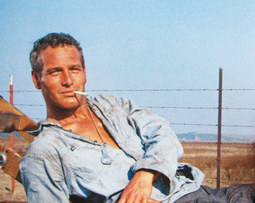 Cool Hand Luke: Top 10 Film of All-Time? - MIKEu0026#39;S DAILY ...