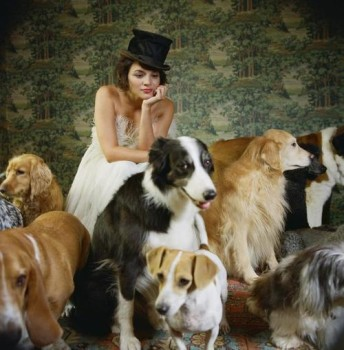 What to do with NOS parts? Norah_Jones_Dogs-344x350